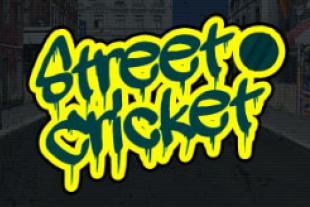 street-crciket